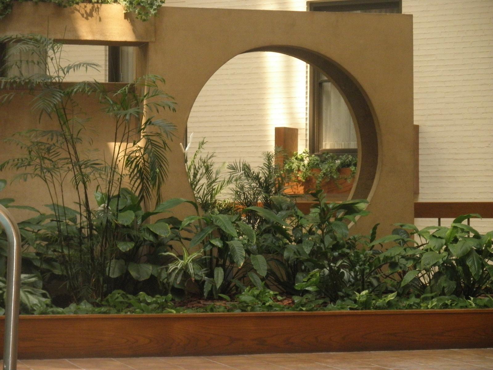 Summer Indoor Plants 2